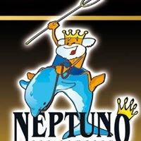 Neptuno Sea Company