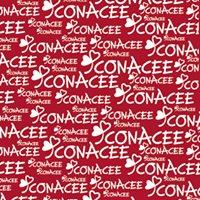 CONACEE. Confederación Nacional Centros Especiales Empleo