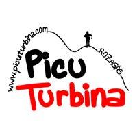 Carrera por Montaña Picu Turbina