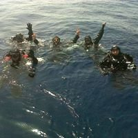 Morgan diving center
