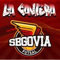 Segoviafutsal La Cantera