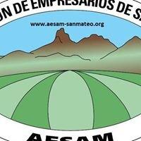 AESAM