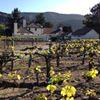 Chateau Julien Wine Estate, Carmel Valley