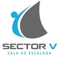 Sector V