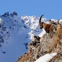 Bureau des Guides et Accompagnateurs des Deux Alpes