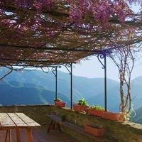 Can Coll de Pincaró - Ecorefugi