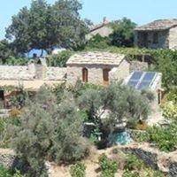 www.ikarianwine.gr