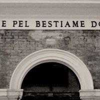 Ex Mattatoio - Roma