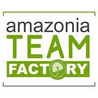 Amazonia Team Factory