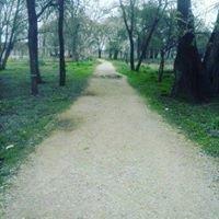 Λουτρά Λαγκαδά