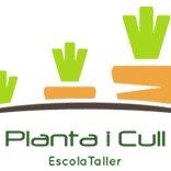 Alquería Planta I Cull