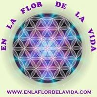 Centro En la Flor de la Vida