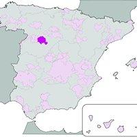 Rueda (vino)