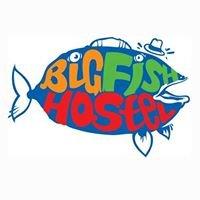 Big Fish Las Palmas Hostel