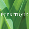 Eteritique