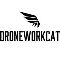 Droneworkcat
