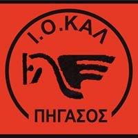 """Ιππικός Όμιλος Καλαμαριάς """"Ο Πήγασος"""" Θεσσαλονίκη - Θεραπευτική Ιππασία"""