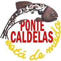 Turismo Ponte Caldelas