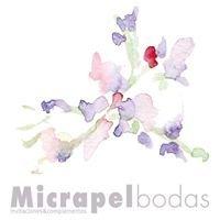 Micrapelbodas