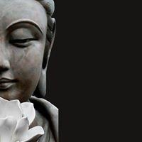 Zen Rous Viladecans