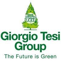 Giorgio Tesi Group