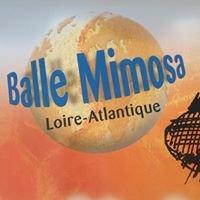 Balle Mimosa Loire-Atlantique
