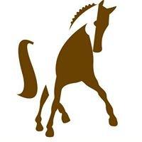 Equip Vidreres Centre d'Equitació