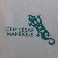Ceip Cesar Manrique