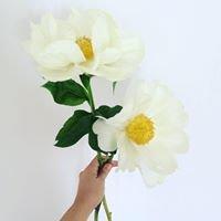 Åsa Blommor och Trädgård