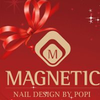 Magnetic International Nail Academy By Popi