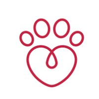 Passion 4 Paws Pet Sitting Service