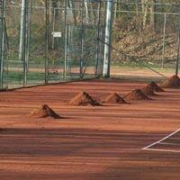 Tennisclub de Reest