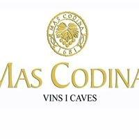 Mas Codina Caves