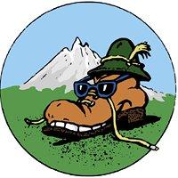 Planinsko Društvo Loče