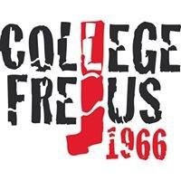 Istituto Frejus