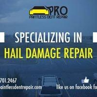 Pro Paintless Dent Repair