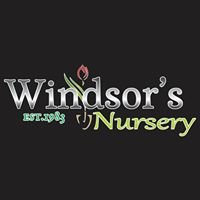 Windsors Nursery