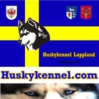 Huskykennel Lappland