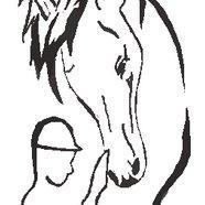 Gamnes gård / Harstad hestesportsenter