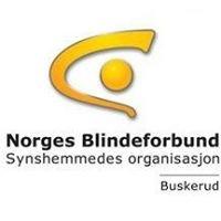 Norges Blindeforbund Buskerud