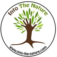 Into The Nature