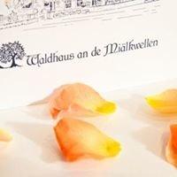 """""""Waldhaus an de Miälkwellen"""" Ladbergen"""