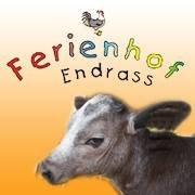 Ferienhof Endrass
