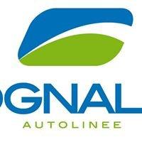 Autolinee Crognaletti