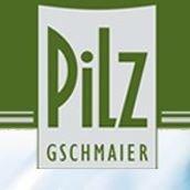 Weingut Pilz
