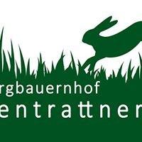 Bio-Bergbauernhof Hasentrattner