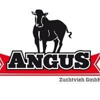 Bio Angus Rindfleisch