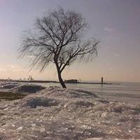 Podersdorf im Winter