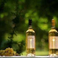 Wine Shop 33