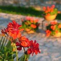 "Tenuta Tragni ""i fiori di pietra"""